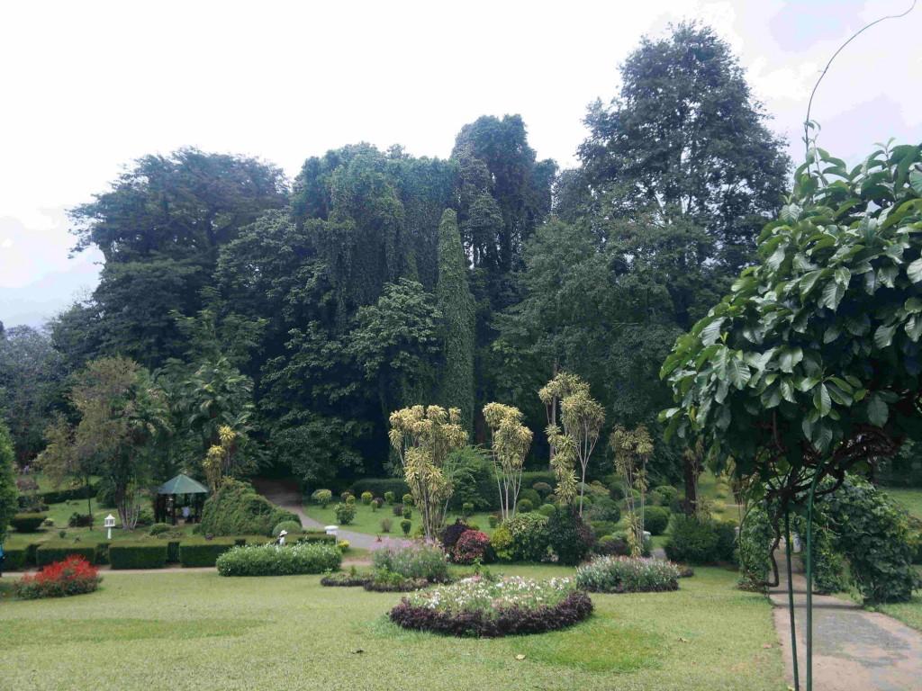 Royal Garden - babki.kz